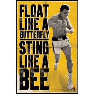 plakat Muhammad Ali - Float Like A Butterfly - PYRAMID POSTERS, PYRAMID POSTERS