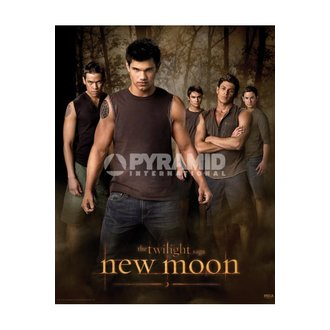 plakat Twilight - Novo Moon (Wolf Pakiranje) - MPP50303, TWILIGHT