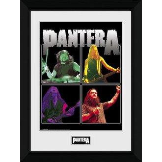 Poster (uokvirjen) Pantera - GB posters, GB posters, Pantera