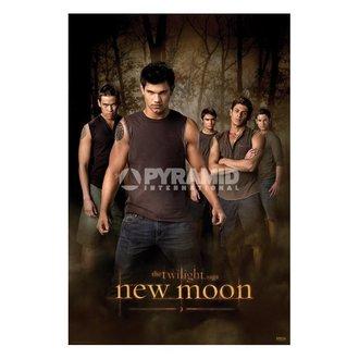 plakat Twilight - Novo Moon (Wolf Pakiranje) (&&string1&&) - PP32065, TWILIGHT
