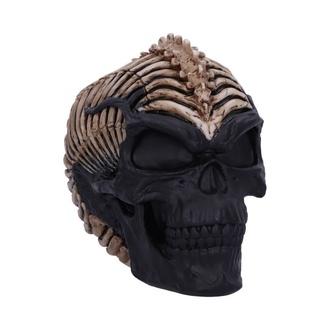 Dekoracija Spine Head Skull, NNM