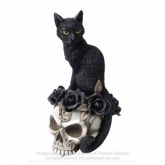 Dekoracija ALCHEMY GOTHIC - Black Cat & Skull, ALCHEMY GOTHIC