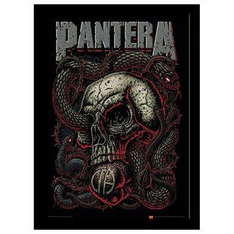 Uokvirjen plakat Pantera - Snake Eye - PYRAMID POSTERS, PYRAMID POSTERS, Pantera