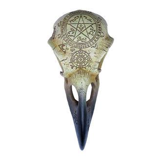 Dekoracija ALCHEMY GOTHIC - Omega Raven Skull, ALCHEMY GOTHIC