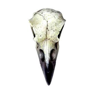 Dekoracija ALCHEMY GOTHIC - Small Raven Skull, ALCHEMY GOTHIC